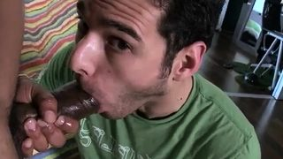 Big mexican cock movieture gallery gay xxx Not every one can