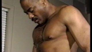 Daddy black bear ramming hard – His Video
