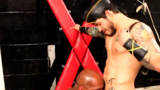 Ebony jocks sucked off by latino stud