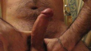 bear cock